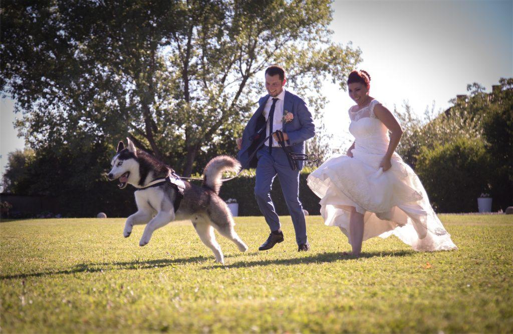 sposi che corrono con il cane