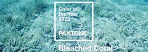 colore 2020